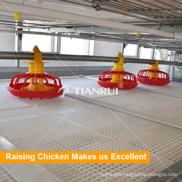China Farming port Automatic Auger Feeding System for Chicken