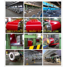 Color Coated Gi Gl Coil Prepainted PPGI PPGL Steel Coil