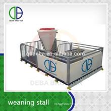 Stylo de porc d'équipement d'élevage de tuyau galvanisé par immersion chaude