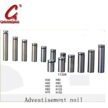 Stainless Steel Advertising Nail (11326)