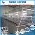 système de cage de poulet équipé d'un système d'alimentation automatique