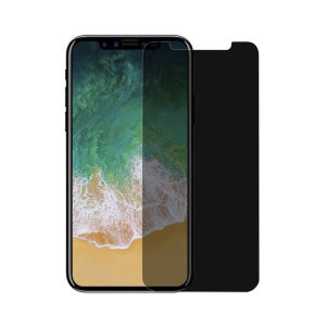 2.5D Privacy Glass Protector voor iPhone X