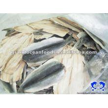 atlantic herring fillet