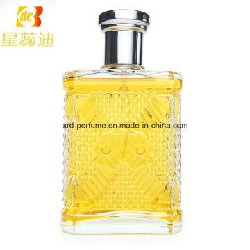 Prix Usine Hommes Parfum Design Propre