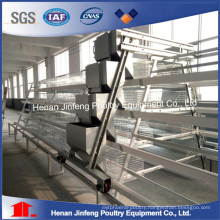 Broiler Chicken Birds Cage Frame Poultry Farm Use