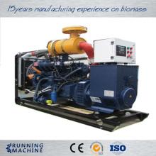 Gas powered generator and biogas generator