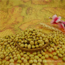 Soybean 6-8mm good manufacture with best quality 2015crop