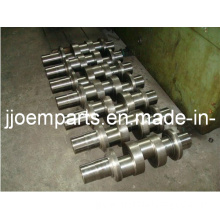 Triplex Plunger Pump Forged/Forging Crankshafts/Crank Shafts