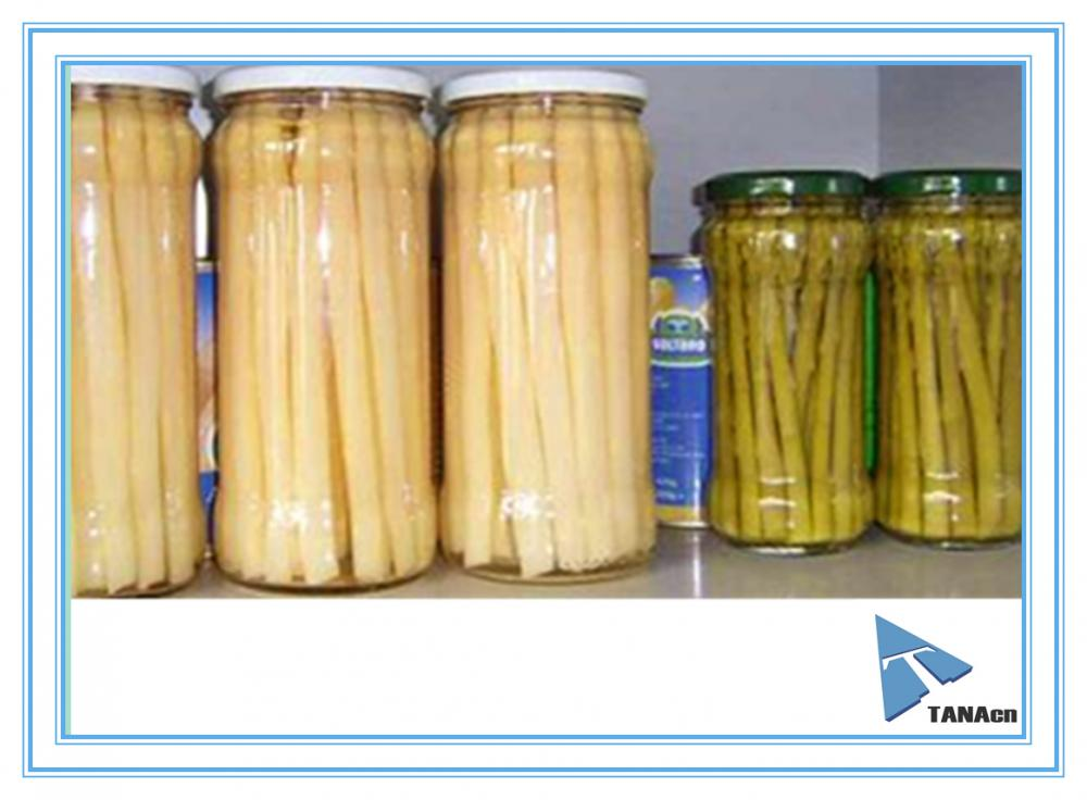 Canned Green Asparagus Spears/White Asparagus Spears