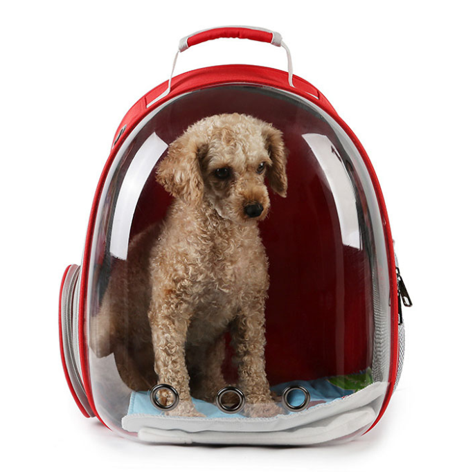 Bubble Dog Backpacks