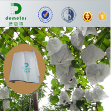 Cheap Disposable Water Insect Against Fruit Grape Grow Bags to Prevent The Sunshine Burning