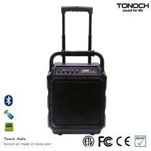 8 polegadas portátil consumidor DJ alto-falante com Bluetooth e bateria