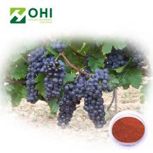 Pigment naturel de couleur rouge de peau de raisin