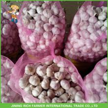 Свежий стиль Новый урожай Свежий чеснок Чистый белый чеснок 5.0cm В мешке 7кг.
