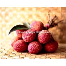 Fresh lychee fruit for australia market