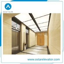 6 Person Used Elevator Passenger Lift for Residential Building