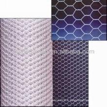Mesh hexagonal (propre usine personnelle)