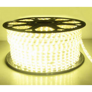 220V 5050 SMD Flexible LED Strip Light