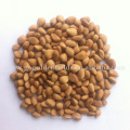 2017 new wild dried fruit pine nuts cheap bulk pine nuts in sale
