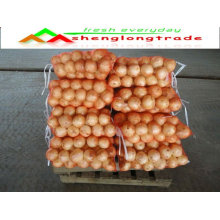 2011 fresh yellow onion(4-9cm) with competitive price