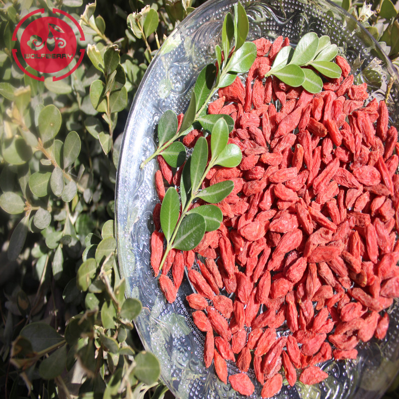 Anti-Penuaan Superfood Melindungi Berry Goji Eyesight