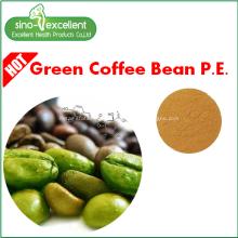 Ácidos clorogênicos Extrato de feijão de café verde
