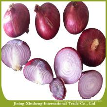 Exportateur d'oignons rouges frais en vrac de Chine