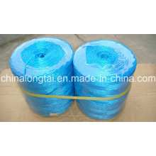 6mm High Tenacity and Cheap Price Banana Rope/Packing Twine (SGS)