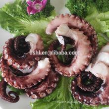 Ganze gereinigte Oktopus für den Export