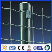 PVC coated Euro fence (professional factory best price)