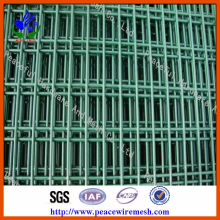 PVC Coated Welded Wire Mesh (DHWP02)