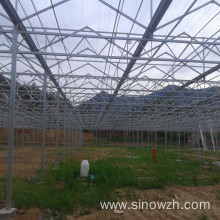 Farm steel structure greenhouse for plant
