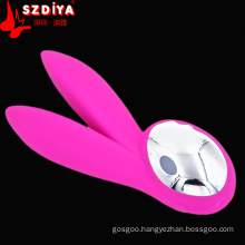 Pleasure Rechargeable G-Spot Vibrating Sexy Toys (DYASY504)