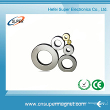 Strong Sintered Neodymium Ring Magnet