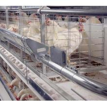 Cage de poulet de batterie de couche de vente chaude pour l'oeuf