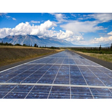 Módulo solar do painel solar 250W de Poly Perlight da eficiência elevada do fornecedor para o sistema de energia solar