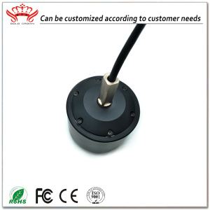 2950RPM 8456 DC Brushless Hub Motor