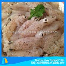 frozen baby squid