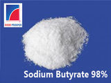 Made in China Powder Sodium Butyrate 98%