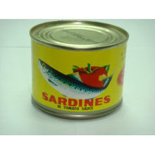 155g Canned Sardine with Best Price