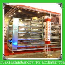 Gaiola de camada de frango com coleta automática de ovos, alimentação automática e sistema de rega