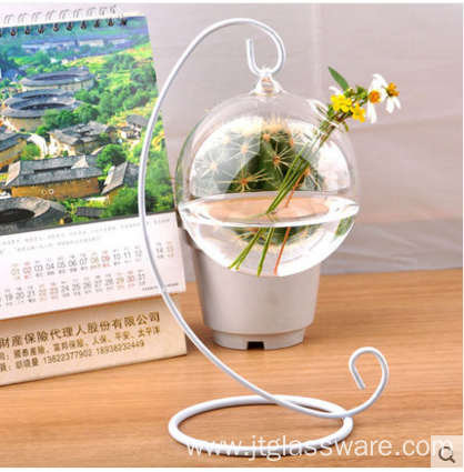 Hot Selling Indoor Plant Rose Glass Terrarium