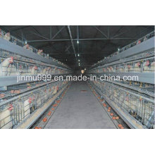 Cheap Breeders Chicken Cage From China on Sell