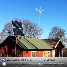 Generador de turbina de viento pequeño de 600W (MAX 600W)