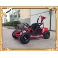 1000 W electric mini buggy