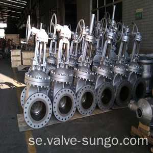 Klass 300 WCB Gate valve