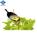 Manufacturer High Quality Dha Algal Oil 100% Nature