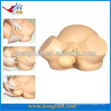 Modelo de entrega de vácuo ISO Modelo avançado de formação de obstetrícia entrega de gravidez