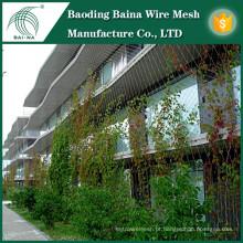 Planta de abastecimento de muro de malha / rede de muro de parede verde