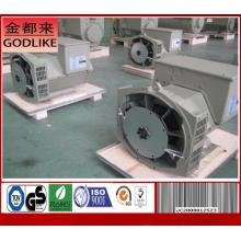 Завод генераторов переменного тока мощностью 27,5 кВА / 22 кВт переменного тока